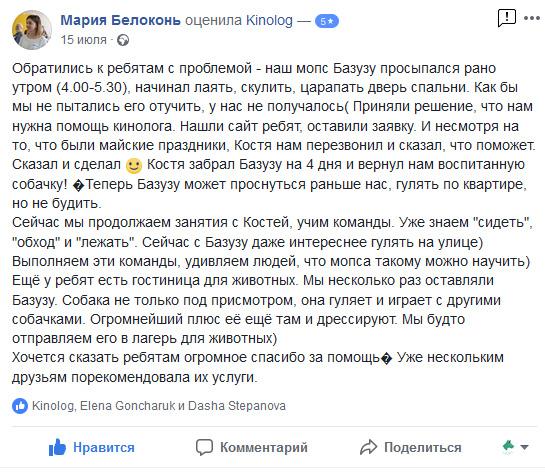 Отзыв клиента о работе KINOLOG